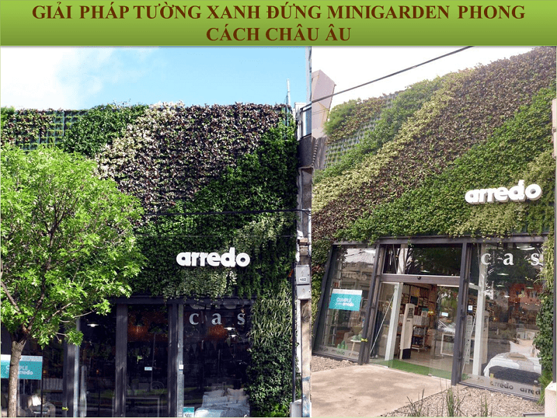 Urban-green-wall-minigarden-2