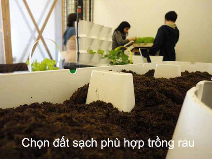 chon-dat-sach-phu-hop-trong