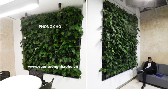 giai-phap-vuon-tuong-nha-ph-2