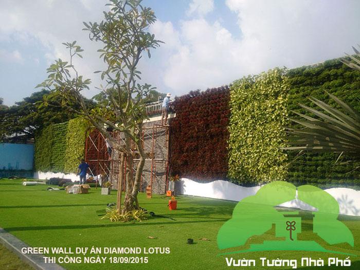 thi-cong-vuon-tuong-nha-pho