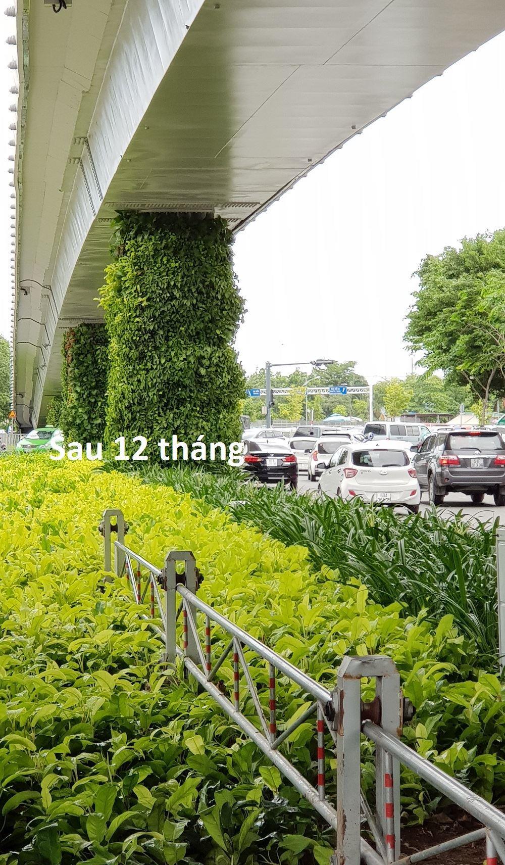 tuong-dung-san-bay-TSN-sau 12 thang 2