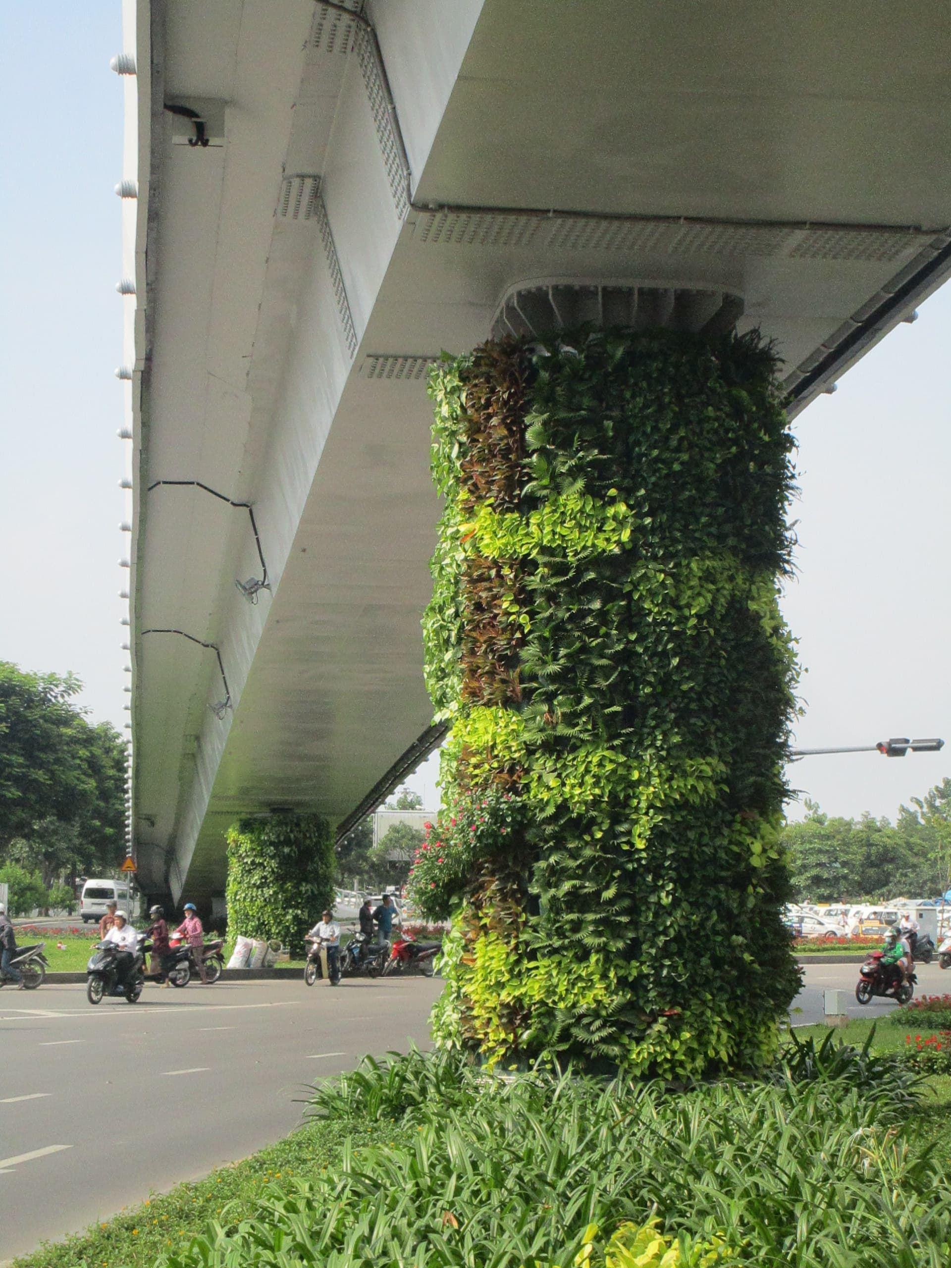 so-sanh-tuong-xanh-dung-Minigarden-sau 2 thang 1