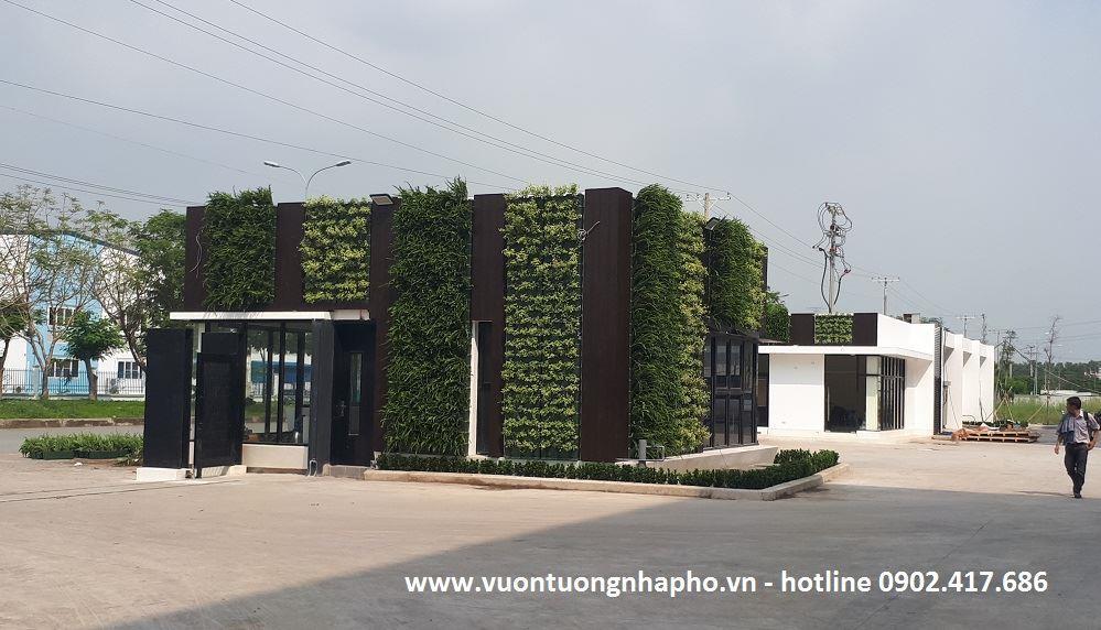 Thi-cong-vuon-tuong-dung-minigarden-long-an 14
