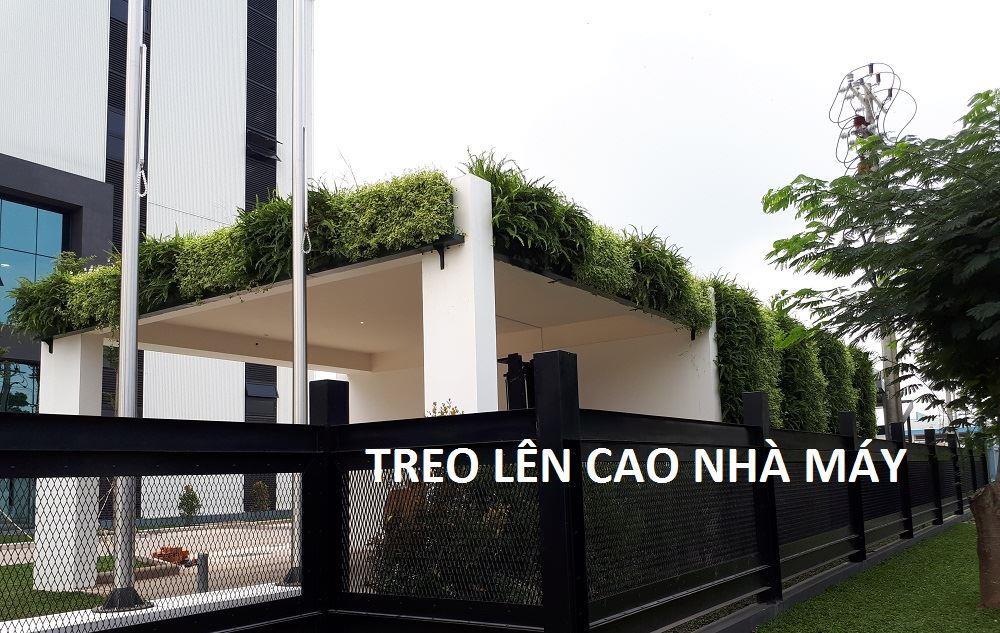 tuong-xanh-dung-minigarden-nha-may-long-an 12