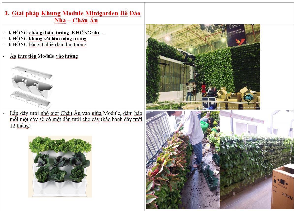 vuon-tuong-dung-minigarden-uu-diem 6