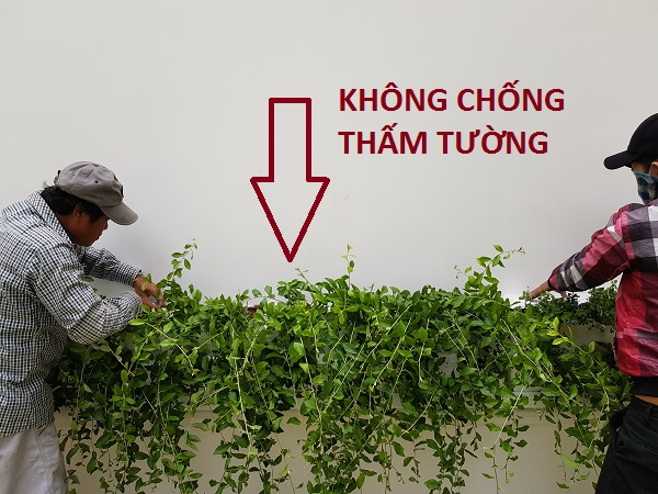 tuong-dung-minigarden-vietnam-bac-dung-dai-nam 10