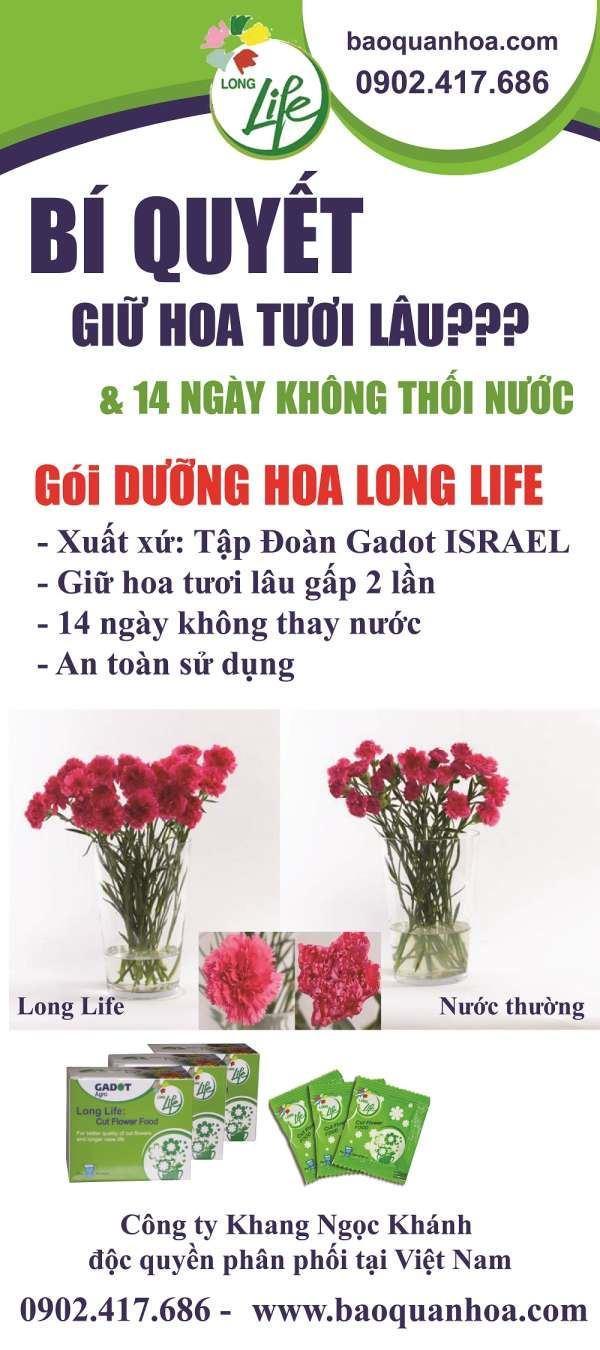 1. Banner Tong - dinh-duong-hoa-long-life