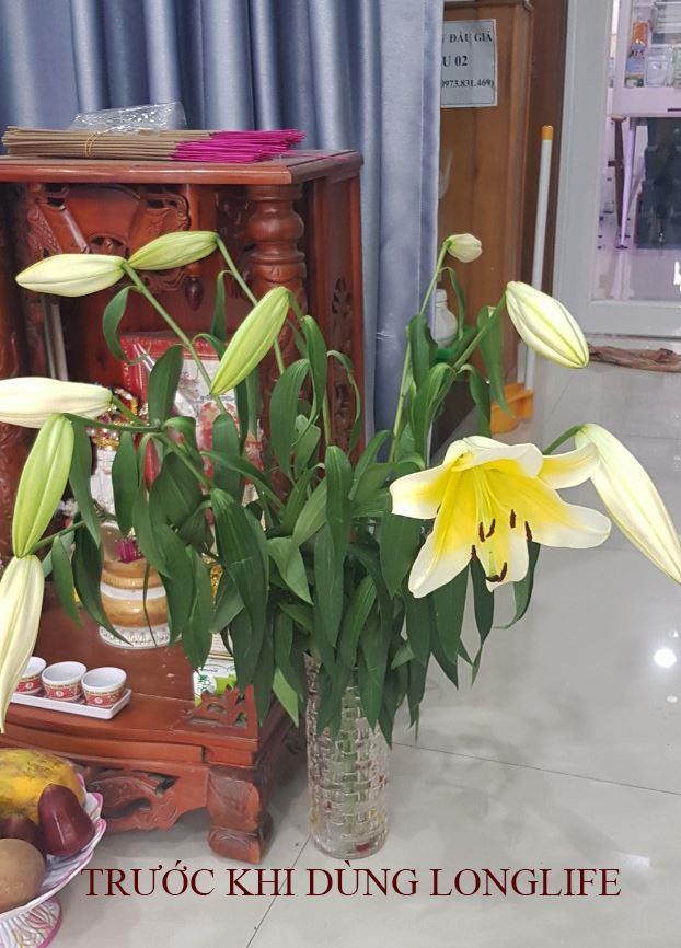 xu-ly-hoa-lily 1