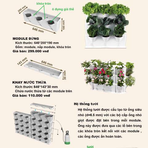 1. Module Vuon Đứng Minigarden Bo Dao Nha