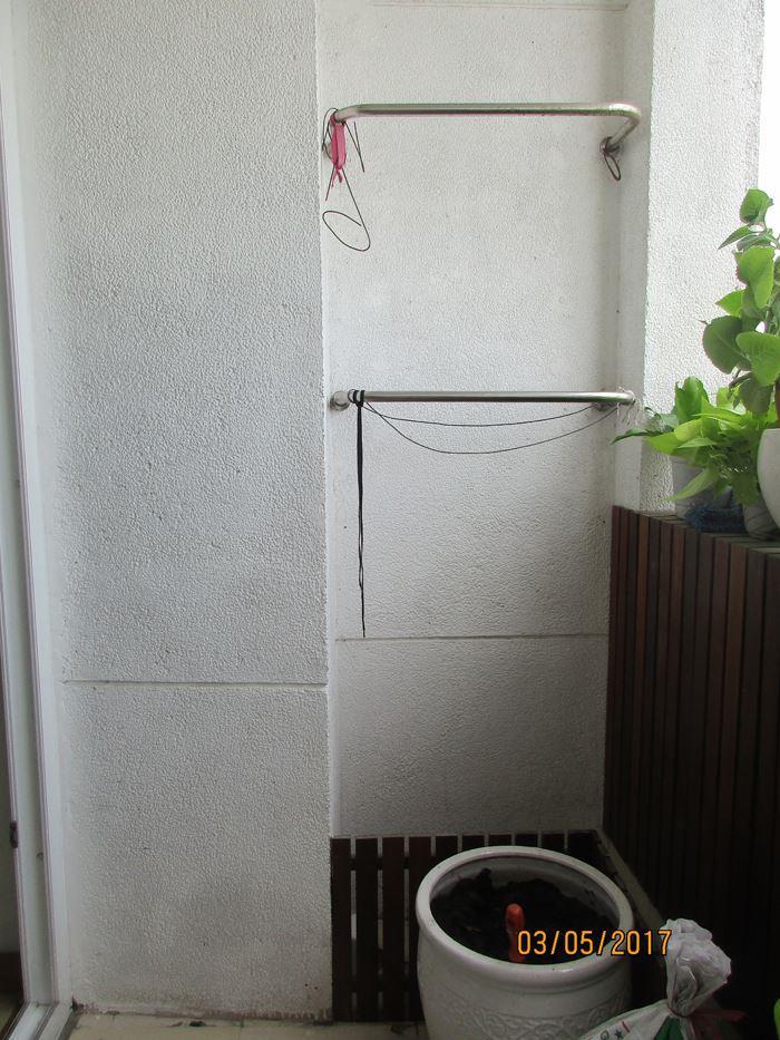 cay-ban-cong-dung-minigardenvietnam 21
