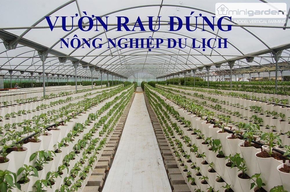 du-lich-nong-nghiep-vuon-dung-minigarden 23