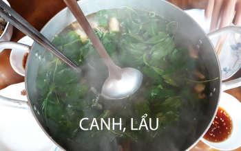 la-hong-dang-sam-lam-lau-nha-hang