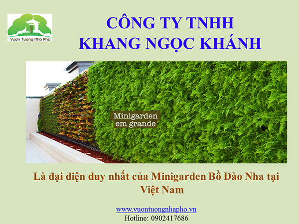 khang-Ngoc-Khanh-Minigarden 0