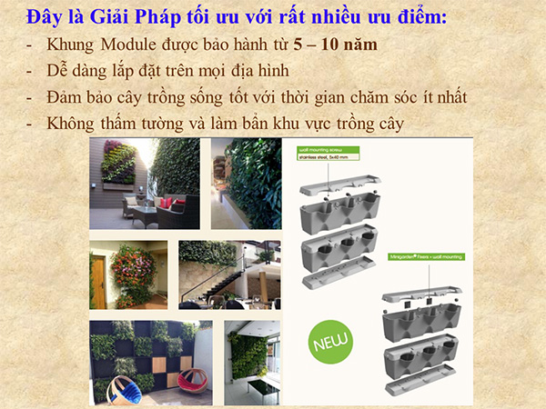 khang-Ngoc-Khanh-Minigarden 2