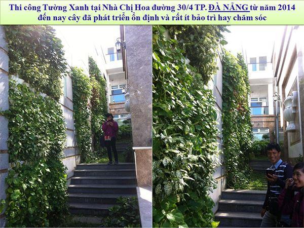 khang-Ngoc-Khanh-Minigarden 22