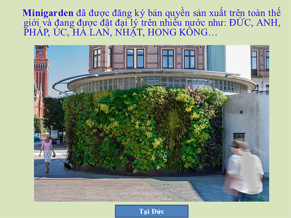 khang-Ngoc-Khanh-Minigarden 4